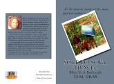 Soletosoultravelcover